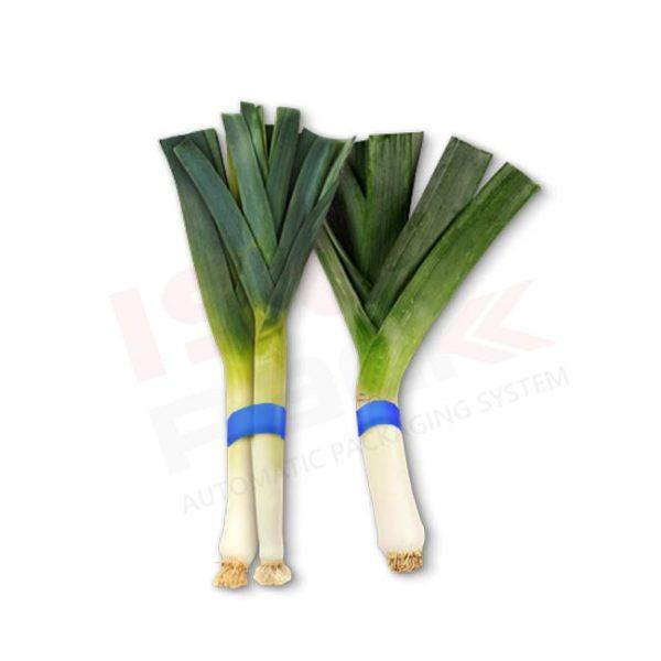 Rilegatura verdura con fascettatrice